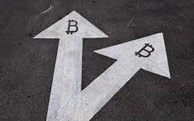 bitcoin_bcc