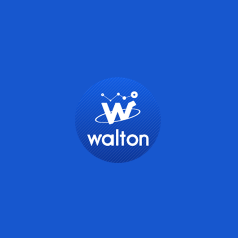 What is Cryptocurrency Walton (WTC)?