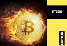 kriptovalyuta-bitcoin