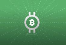 kriptovalyuta_bitcoincash_eto