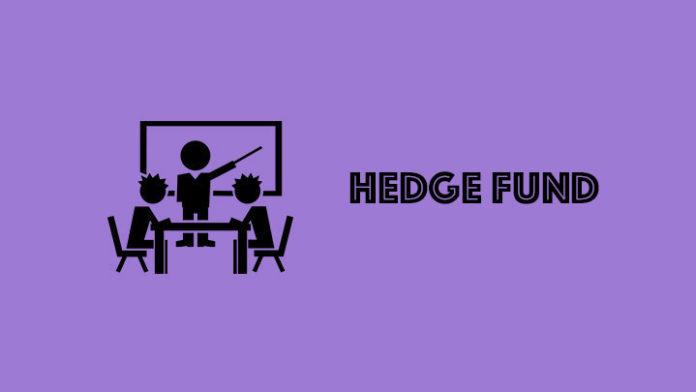 chto-takoe-hedge fund