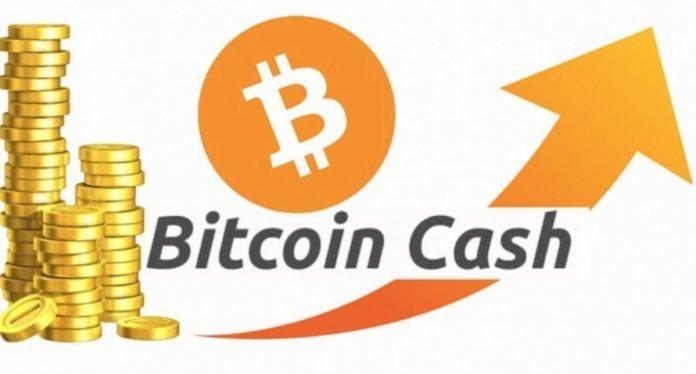 Bitcoin-cash-pokazal-yverenniy-rost-bitbetnews