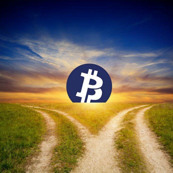 razrabotchiki-bitcoin-private-zarabotali-na-premajne-2-milliona-tokenov