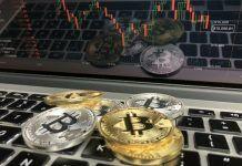 prognoz-kriptovaliut-na-ianvar'-2019-goda-bitbetnews