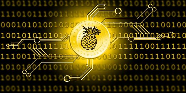 140-tysjach-dollarov-iz-pozhertvovanija-fonda-pineapple-isparilis-vvidu-snizhenija-kursa-bitcoin