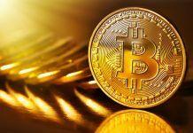professor-jelja-kritikuet-bitkoin-za-volatilnost