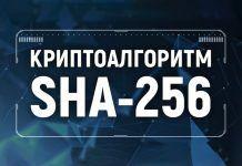 sha-256-bitbetnews