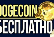 freedogecoin-bitbetnews