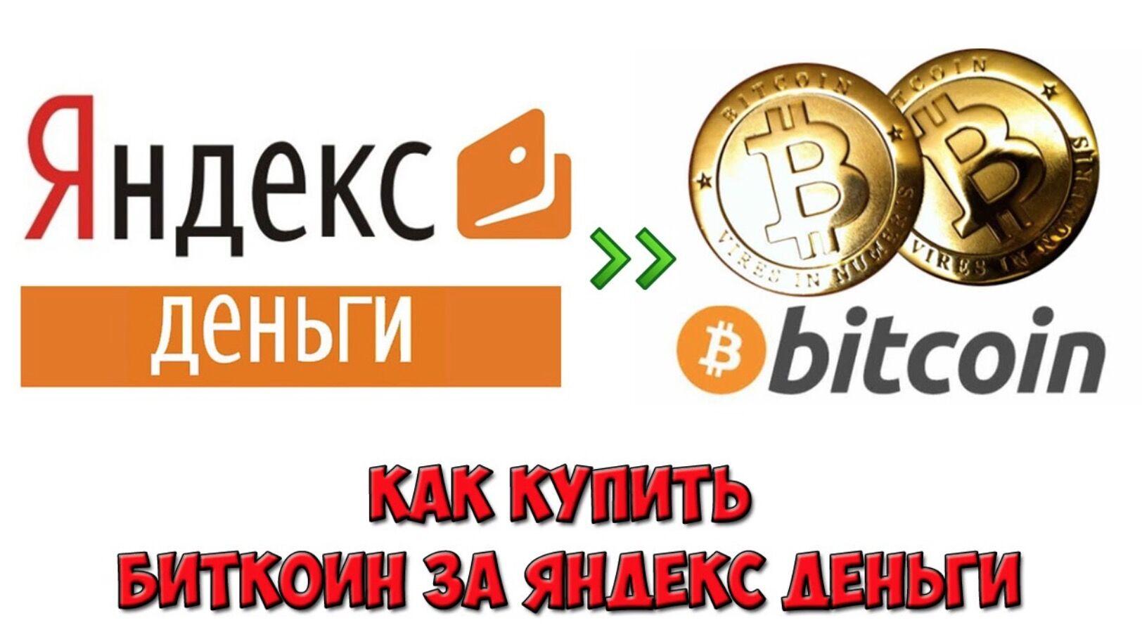 Яндекс деньги для биткоинов форекс банка