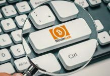 majning-pul-mozhet-zahvatit-kontrol-nad-heshrejtom-bitcoin-cash