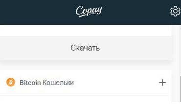 Copay-dopolnitelniy-koshelek