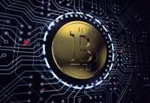 bitkoin-tranzakcii-s-ispolzovaniem-segwit-dostigli-rekordnogo-maksimuma